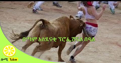 Most awesome bullfighting festival - Funny Videos: Stupid people doing stupid things P2