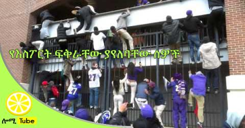 Crazy Baltimore Ravens Fans Climb Fence To Get Inside Stadium For Parade
